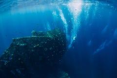 Tuffo libero dell'uomo dell'operatore subacqueo al naufragio ed alle bolle, subacquei fotografia stock libera da diritti