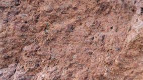 Tufo de pedra vermelho de Filipowice do fundo da textura Fotografia de Stock Royalty Free