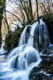 Tufs vattenfall Royaltyfri Fotografi