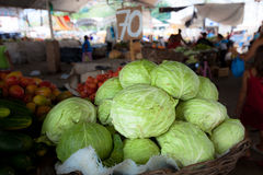 Tuft of cabbage. Cabbage in the market, Salvador de bahia, Brazil Stock Photo