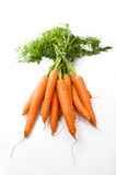 Tuft of carrots. A tuft of carrot on white background Royalty Free Stock Images
