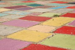 Tuft of grass in a field of colored tiles. A tuft of grass sits in a field of colored tiles under the bright sun Stock Image