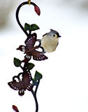 Tufted Titmouse hangs on an ornament. Royalty Free Stock Images
