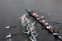 Tufts vs MercyHust in HOTC. BOSTON - OCTOBER 24: MercyHurst and Tuft's University Women's rowing collide during the Head of the Charles Regatta  on October 24 Royalty Free Stock Image