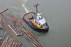Tug Boat Transporting Log Boom photos stock