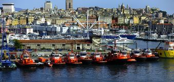 Tug Boats of Genoa Stock Images