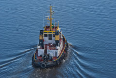 Tug herbert, image 15 Royalty Free Stock Images