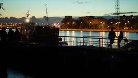 Tug On The Neva River stock video