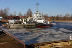 Tug ships are wintering in the bay. Royalty Free Stock Photo