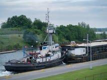Tugboar Salvor Arkivbild
