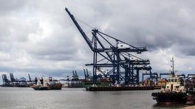 Tugboat & γερανοί 2 Στοκ εικόνες με δικαίωμα ελεύθερης χρήσης