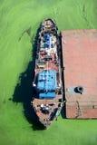 Tugboat στο νερό με τα πράσινα άλγη Στοκ φωτογραφίες με δικαίωμα ελεύθερης χρήσης
