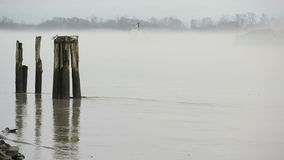 Tugboat and Barge, Fraser River Mist. A tug boat towing a barge on the Fraser River through the fog. Near Vancouver. British Columbia, Canada stock footage