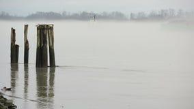 Tugboat and Barge, Fraser River Mist stock footage