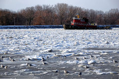 Tugboat Breaking Floating Ice in Frozen River Stock Photography