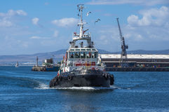Tugboat Cape Town Royalty Free Stock Photo