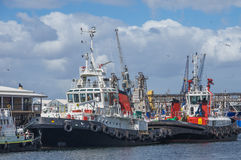 Tugboat Cape Town Royalty Free Stock Image
