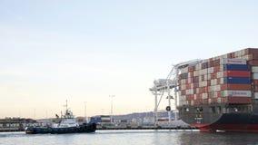 Tugboat LYNN MARIA przy stern ładunku statku YM jednomyślność zdjęcia stock