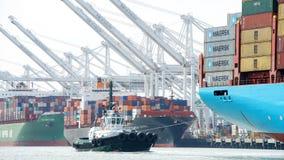 Tugboat PACYFIK ładunku GWIAZDOWY assisging statek GRETE MAERSK manewrować Zdjęcie Stock