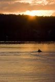 Tugboat Toward Sunrise Royalty Free Stock Photo
