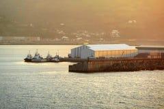Tugboats на заходе солнца Стоковая Фотография RF