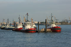 tugboats Fotografia Stock