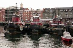 Tugboats dokujący w schronieniu zdjęcie royalty free