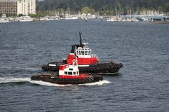 Tugboats, Vancouver Harbor Stock Photos