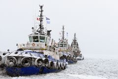 Tugs Stock Photos