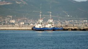 Tugs twin. On the roads of the sea port stock video footage