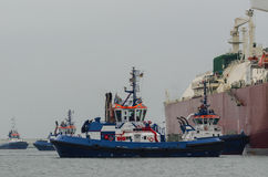 TUGS AT WORK. Tugs insure mooring LNG carrier to the LNG terminal Royalty Free Stock Photography