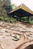 Tugurios en Tailandia Imagen de archivo libre de regalías