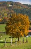 Tuhinj, Kamnik, Словения Стоковое Фото