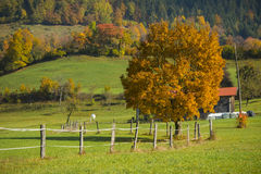 Tuhinj, Kamnik, Slovénie Photo libre de droits