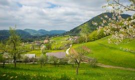 Tuhinj valley, Kamnik, Slovenia Royalty Free Stock Image