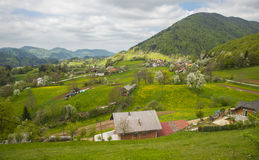 Tuhinj valley, Kamnik, Slovenia Royalty Free Stock Photography
