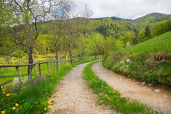 Tuhinj valley, Kamnik, Slovenia Stock Images