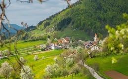 Tuhinj valley, Kamnik, Slovenia Stock Image
