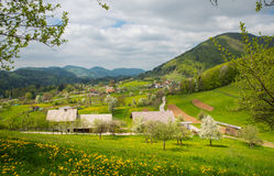 Tuhinj valley, Kamnik, Slovenia Royalty Free Stock Photo