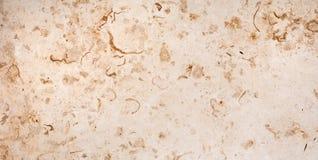 Tuile de marbre beige Image stock