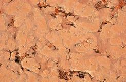 Tuile de terre cuite Image libre de droits
