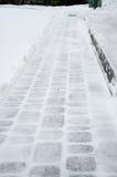 Tuile et neige Photographie stock libre de droits