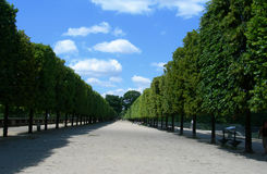Tuileries Garden in Paris, France Stock Photos