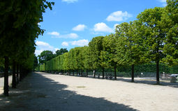 Tuileries Garden in Paris, France Royalty Free Stock Images