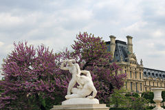 Tuileries garden in Paris. Royalty Free Stock Photography