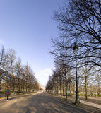 Tuileries garden in Paris Royalty Free Stock Photo