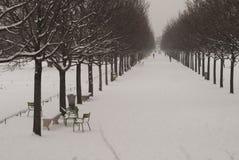 Tuileries garden in Paris Stock Images