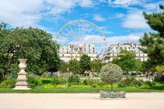 The Tuileries Garden on a summer day in Paris Royalty Free Stock Image