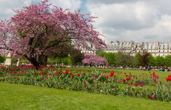 Tuileries Gardens Stock Images