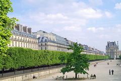 In the Tuileries Gardens Royalty Free Stock Image